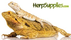 Herp Supplies